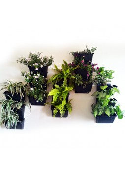 8inch Vertical Garden Pots With Bracket ( Black )   Pack Of Five